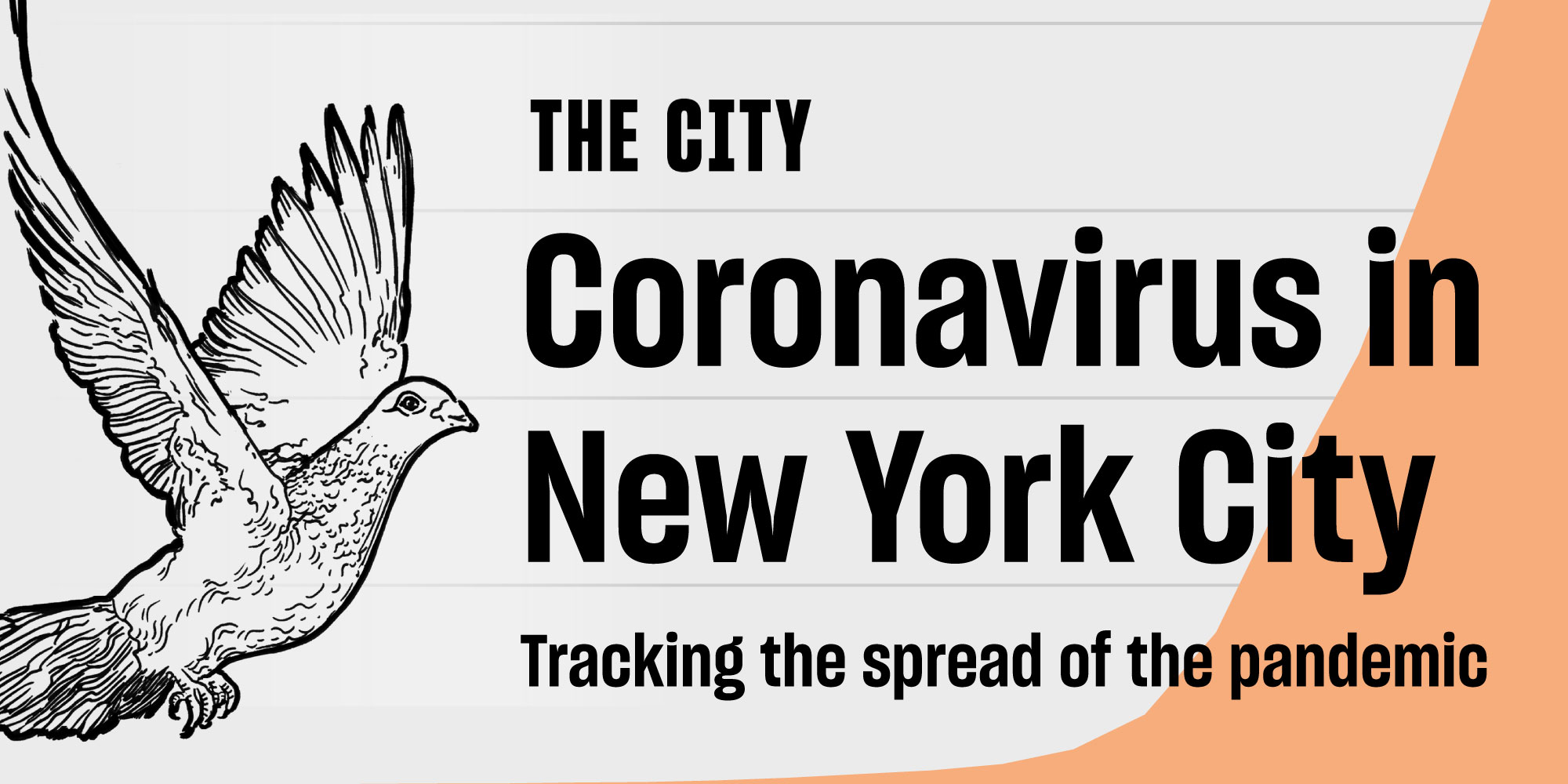 Coronavirus in New York City